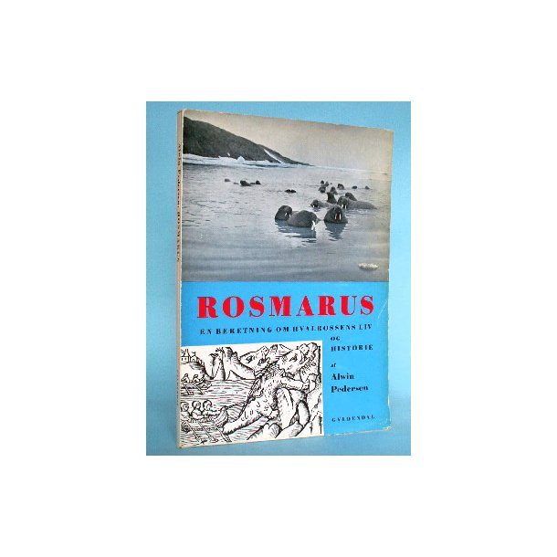 Alwin Pedersen: Rosmarus - en beretning om