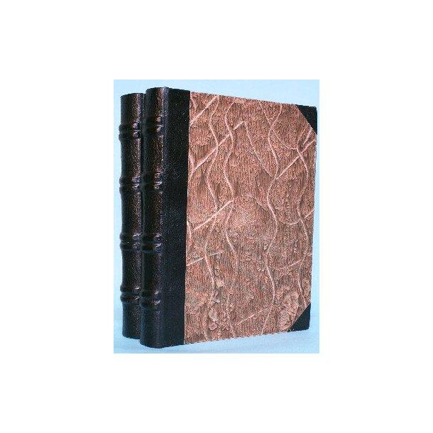 Danmarks Folkestyre (2 bd.), skrevet af