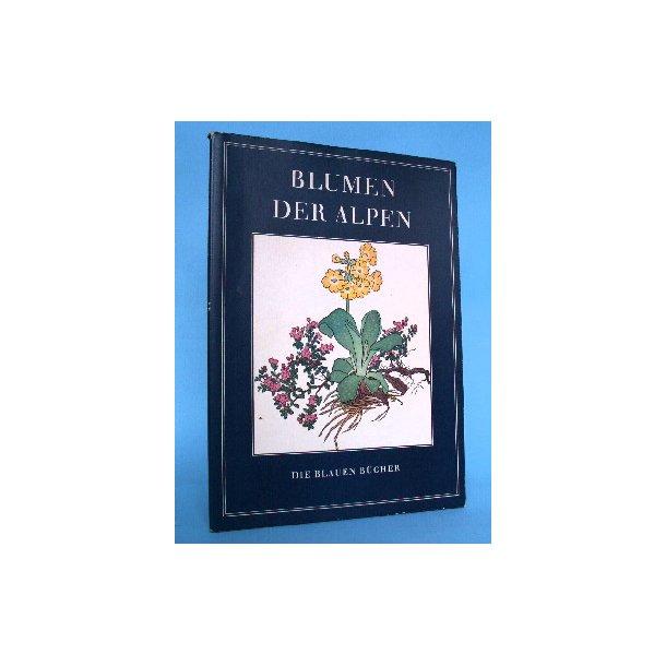 Blumen der Alpen -kolorierte Holzschnitte und Text